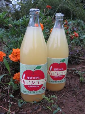 りんごジュース作り講習会