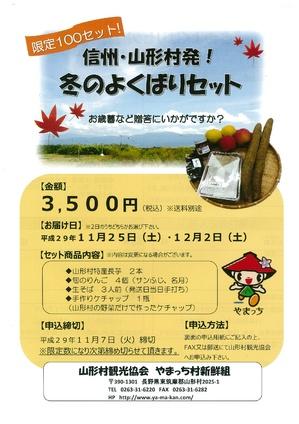 `17野菜セット表-001.jpg