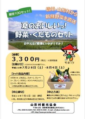 30夏の野菜BOXチラシ(表).jpg