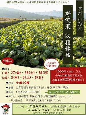 04R2野沢菜収穫体験チラシ (002).jpg