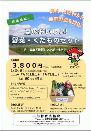 R3夏の野菜BOXチラシ(表).png